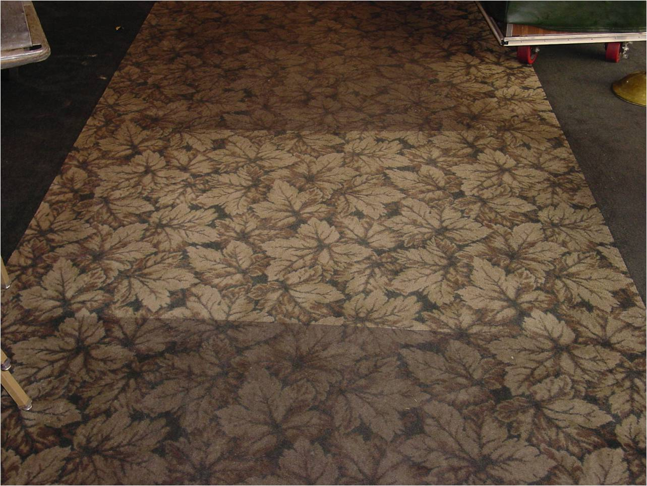 Deep carpet cleaning san antonio