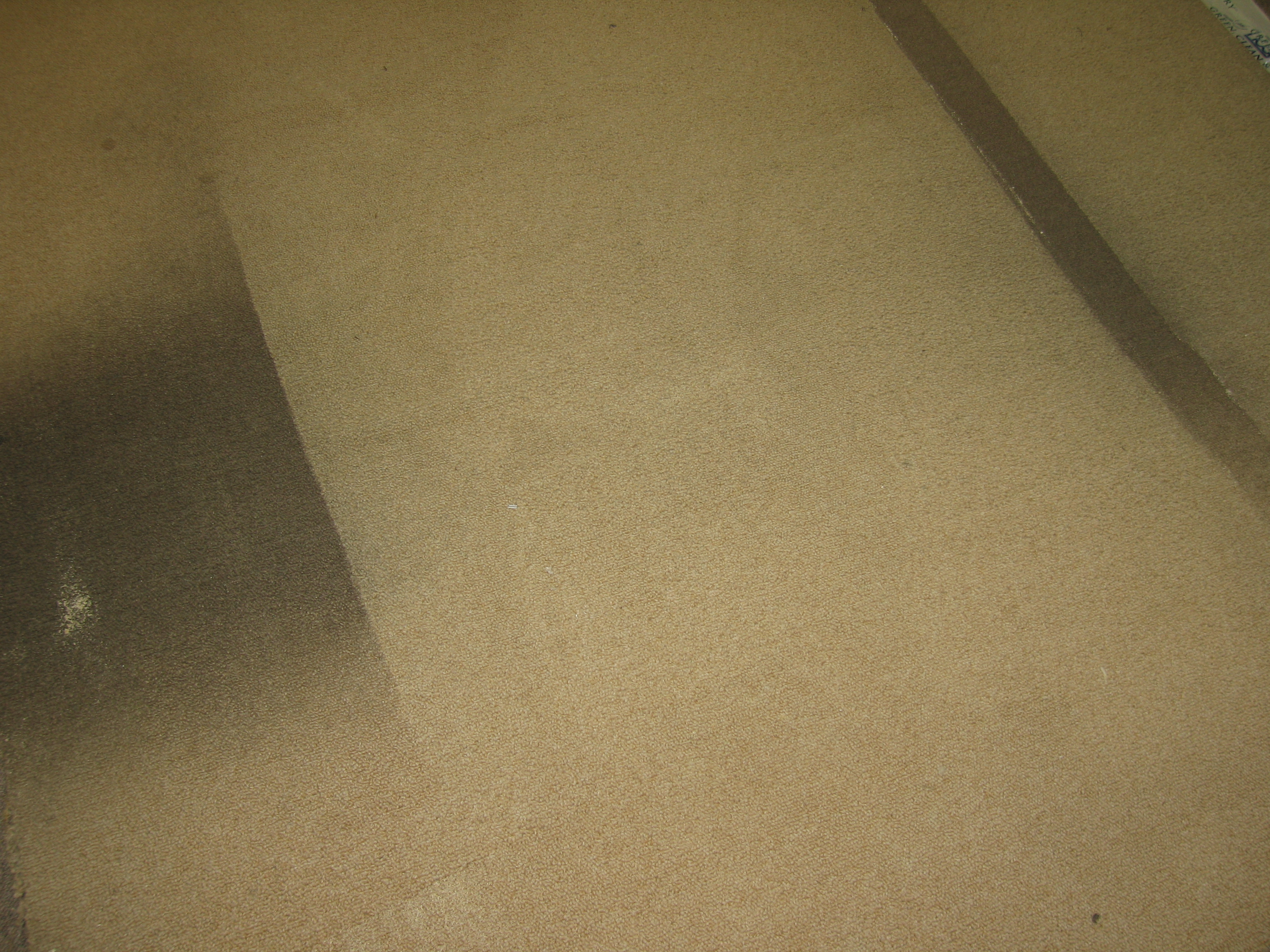 Dry carpet cleaning san antonio